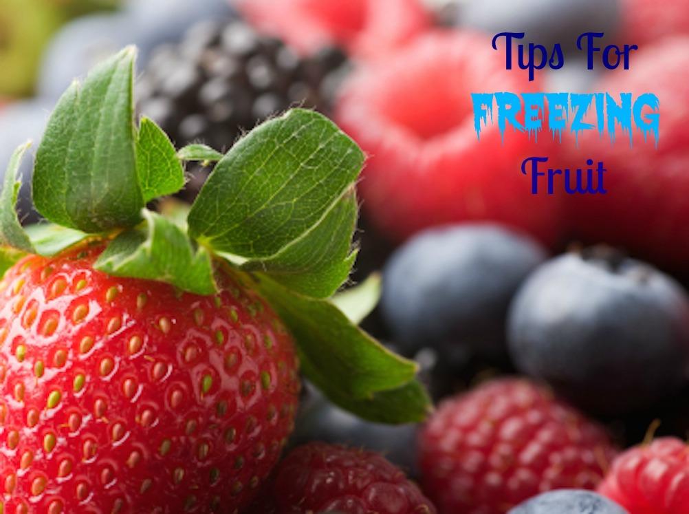 Tips For Freezing Fruit  www.feedingaudrey.com
