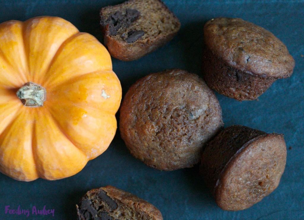 dark chocolate pumpkin muffins www.feedingaudrey.com