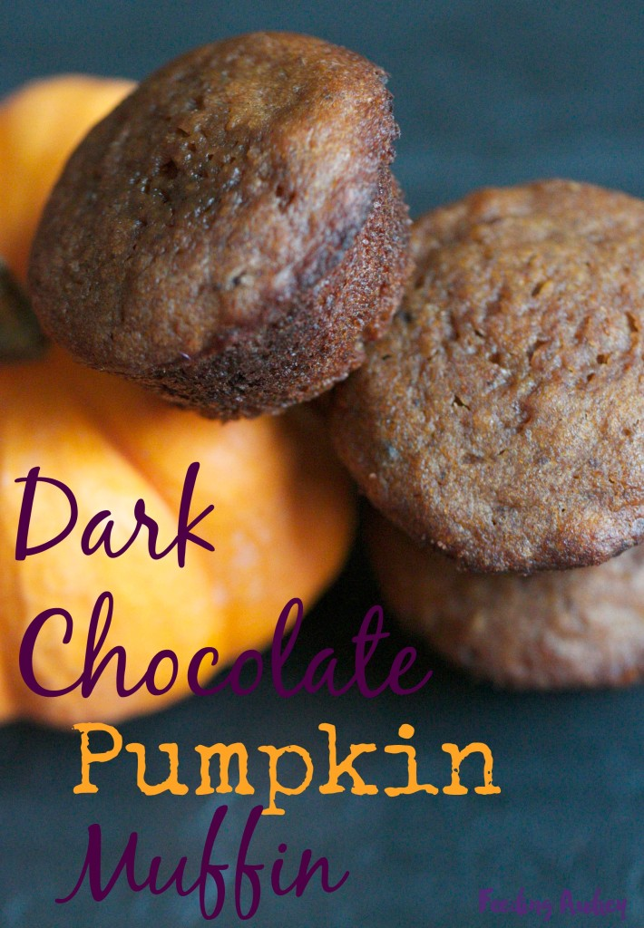 dark chocolate pumpkin muffin www.feedingaudrey.com