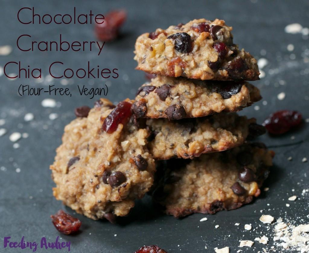 chocolate cranberry chia cookie www.feedingaudrey.com
